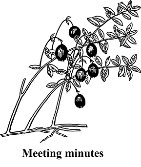 Meetingminutes